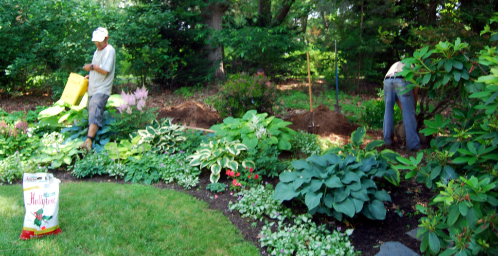 Landscaping Services 1